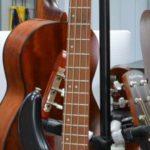 basse-cort-instrument-corde