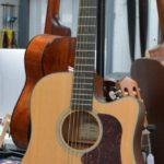 walden-electro-acoustique-folk-guitare