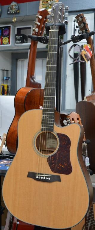 walden-electro-acoustique-folk-guitare
